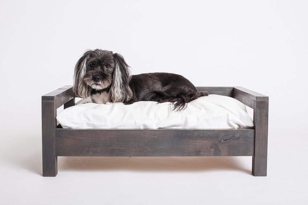 Dawg Blog - Cozy Cama Bed